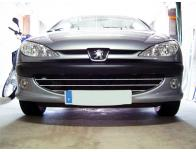 Cornice cromata griglia radiatore Peugeot 206 Peugeot 206 CC Peugeot 206 SW nido dapi