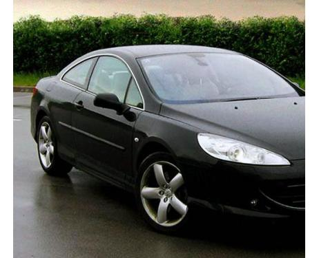 Side windows chrome trim Peugeot 407