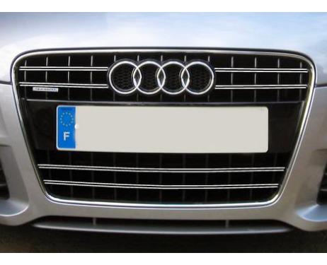Radiator grill dual chrome trim Audi TT Série 2 0614 Audi TT RS Audi TTS