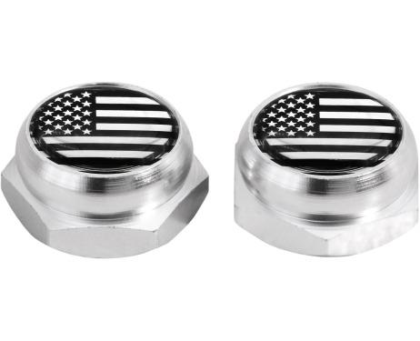 Cappucci per rivetti per targa di immatricolazione USA Stati Uniti dAmerica argenteo cromo